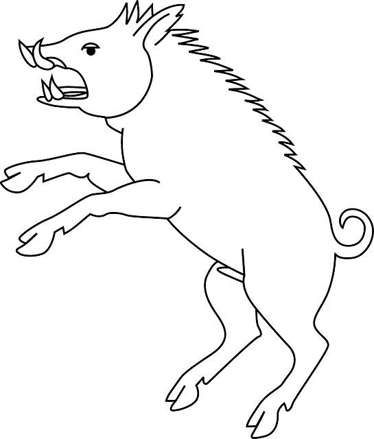 head, outline, drawing, cartoon, pig, wild, stand, draw
