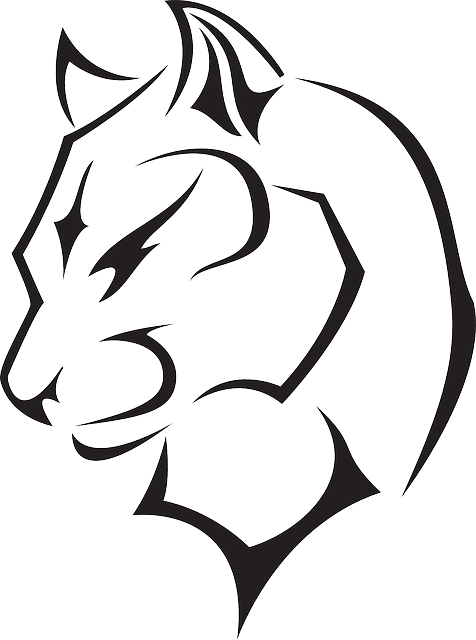 head, outline, wild, panther, animal, jungle, turned