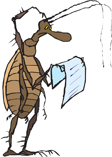 head, paper, reading, cartoon, bug, insect, scratch