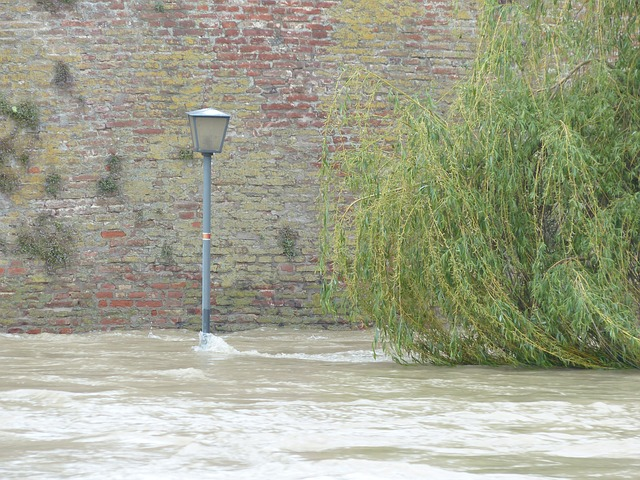 high water, flooding, street lamp, river, water
