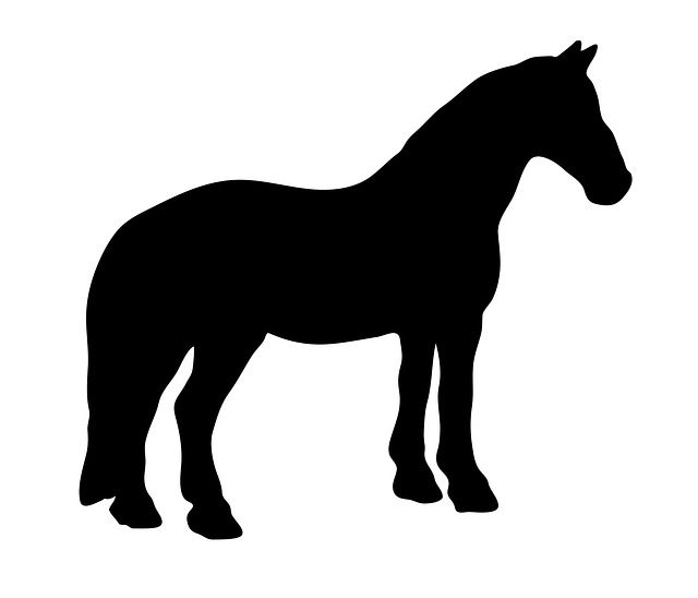horse, equine, animal, black, silhouette, art