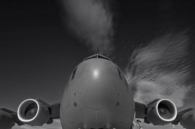 hungary, c-17, plane, aircraft, jet, black and white