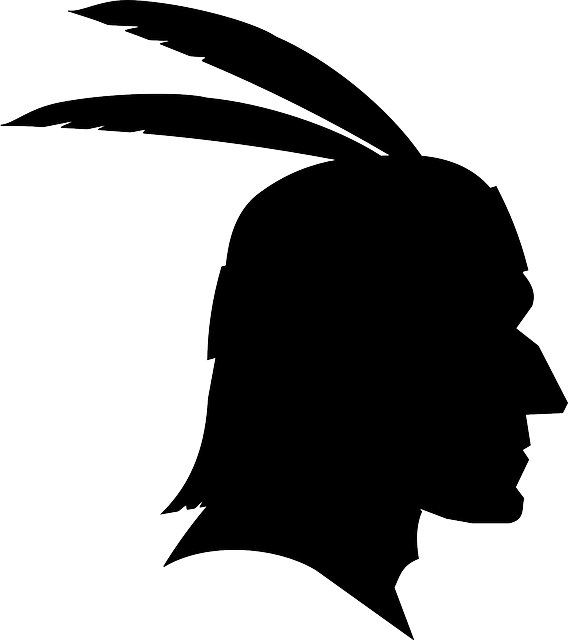 indian, chief, native american, feathers, man, male