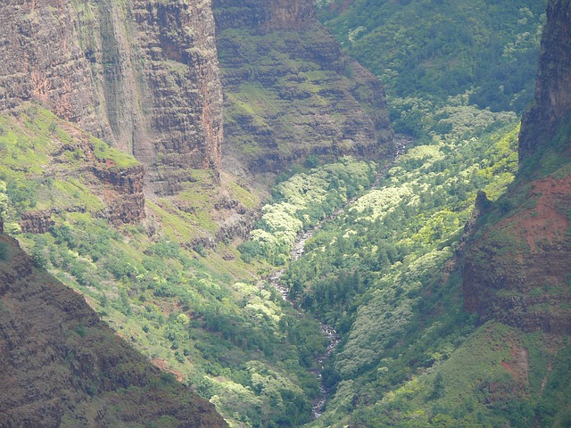 kauai, hawaii, island, nature, view, canyon, weimea