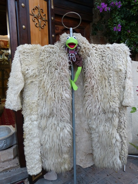 kermit, frog, coat, anziee, large, fur