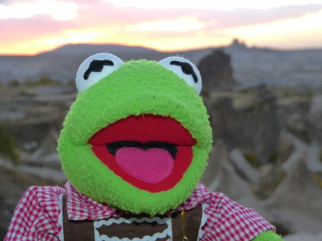 kermit, frog, green, doll, fig, costume, leather pants