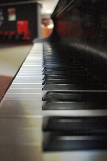keys, white, black, piano, music, sounds, concert