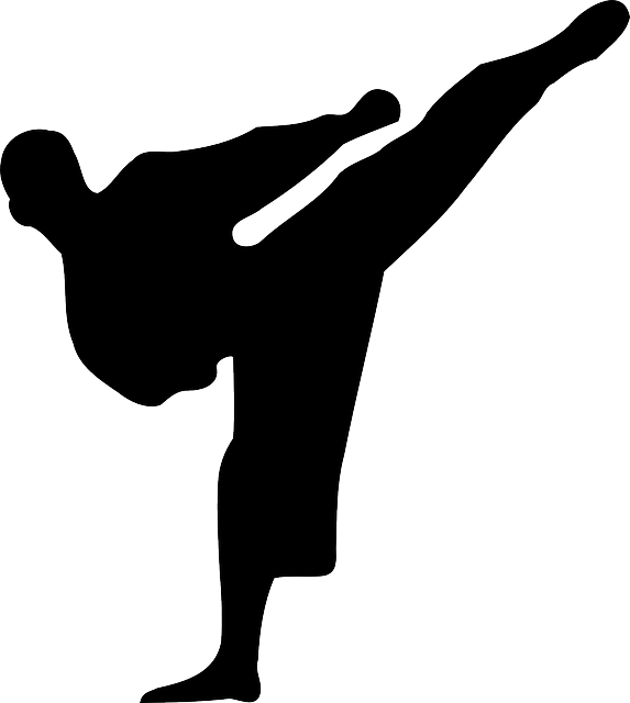 kickboxing, kick, karate, muay thai, thai boxing, black