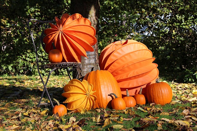 lampion, chinese lanterns, autumn, pumpkins, pumpkin