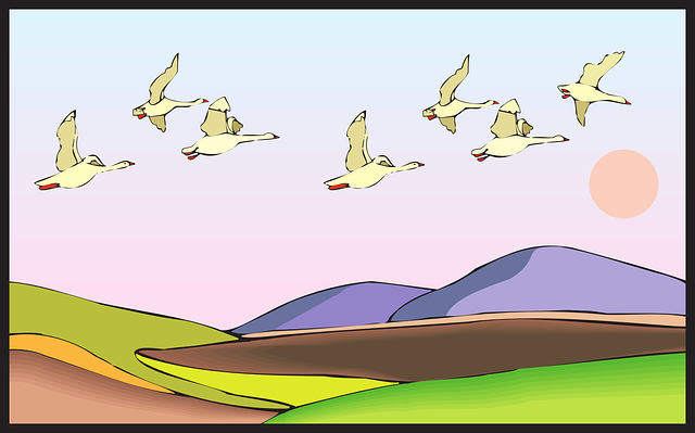 land, birds, flying, sunset, art, mountains, geese