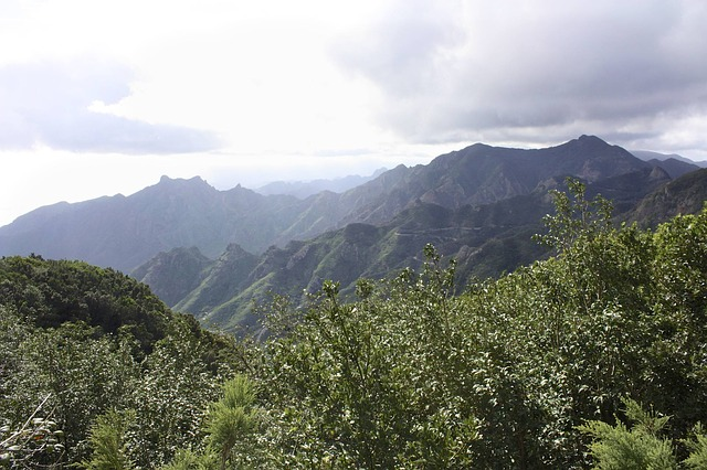 landscape, tenerife, plant, nature, mountains