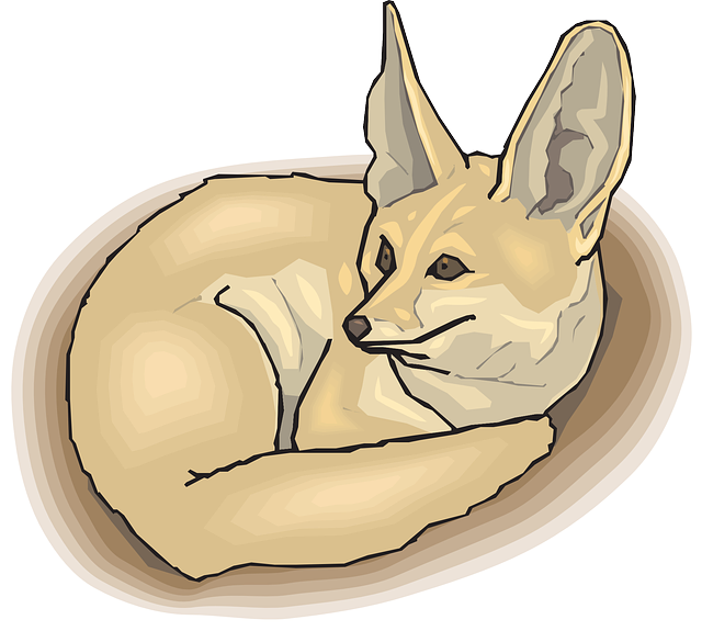 large, fox, tail, ears, fur, curled