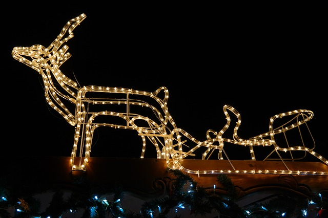lichterkette, christmas, reindeer, moose, slide, winter