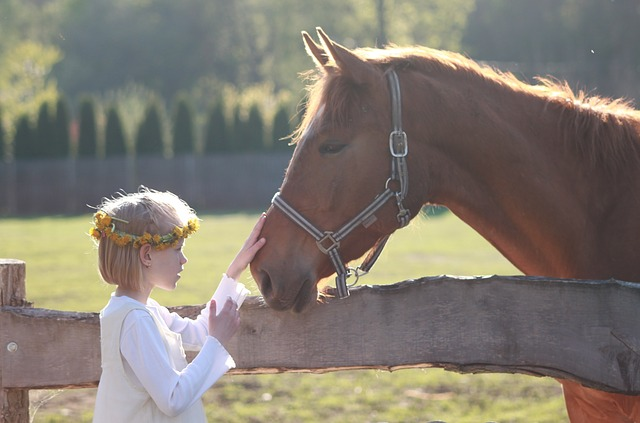 little girl, horse, riding school, horse head