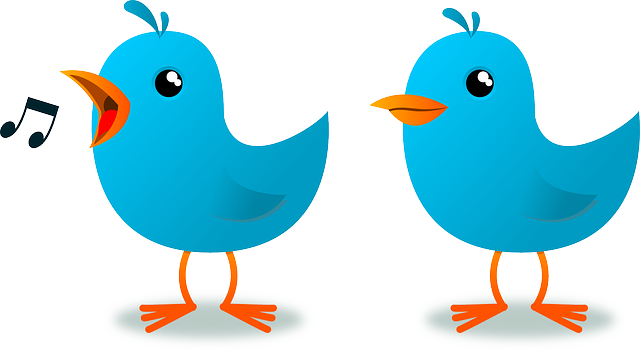 mascot, blue, cartoon, bird, website, animal, twitter