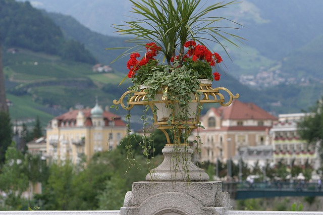 meran, south tyrol, italy, view, dolomites, still life