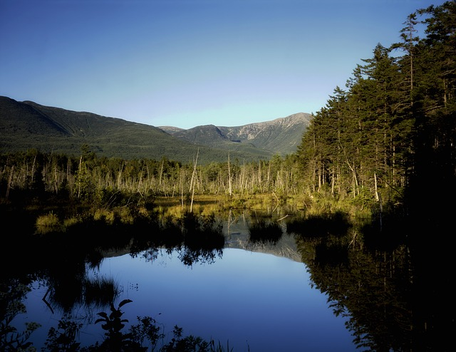 moose bog, maine, landscape, scenic, mountains, rural