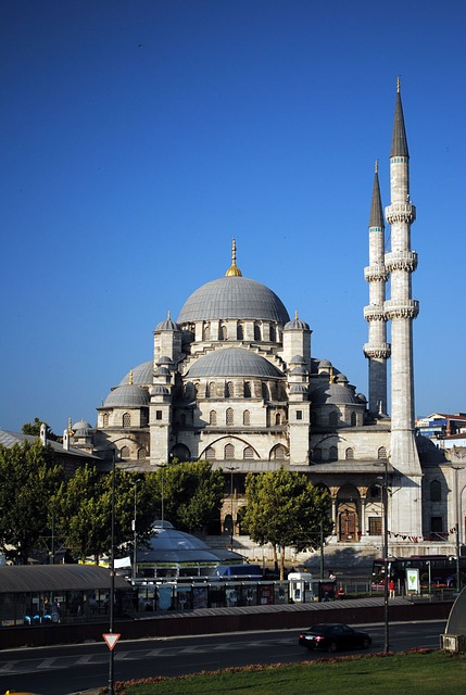 mosque, istanbul, turkey, seaside, morning, august