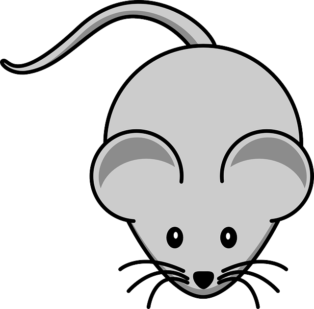 mouse, simple, cartoon, tail, rodent, whiskers