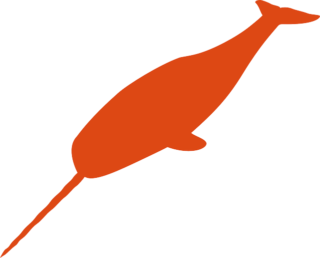 narwhal, whale, fish, animal, silhouette, orange