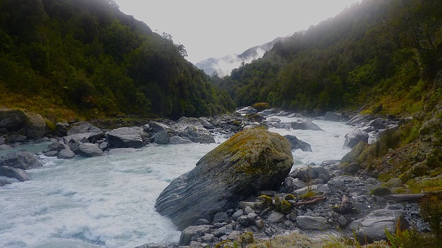 new zealand, whitcombe river, sky, clouds, forest
