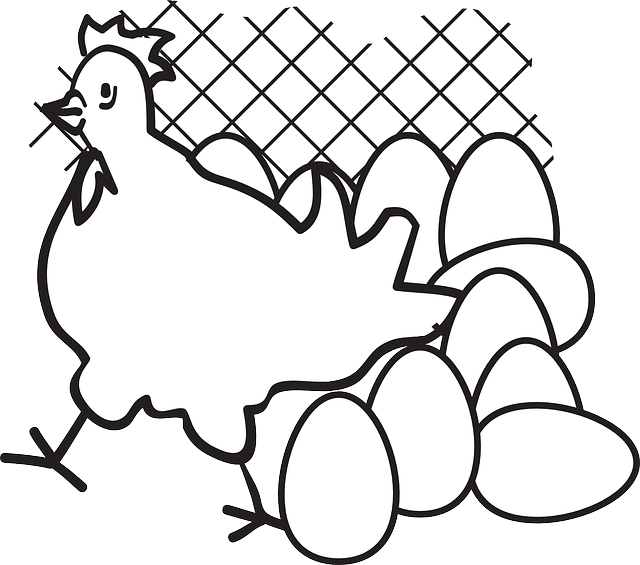 outline, bird, eggs, chicken, fence, art, with, egg