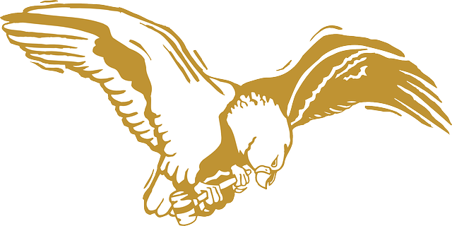 outline, eagle, bird, gold, wings, art, feathers