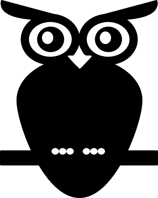 owl, nocturnal bird, animal, bird, sitting