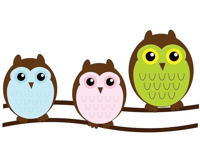 owl, owls, family, cute, green, punk, blue, brown