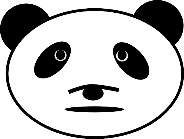 panda, bear, face, head, animal, mammal