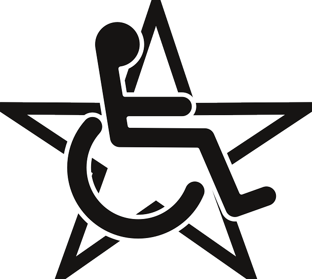 paralympic, disabled, wheelchair, black, star