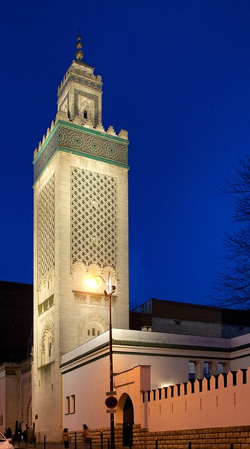 paris, france, minaret, mosque, building, architecture