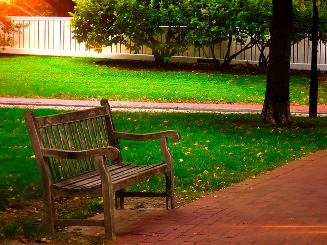 park bench, walkway, grass, philadelphia