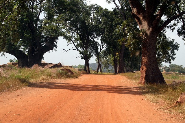 path, track, road, burkina faso