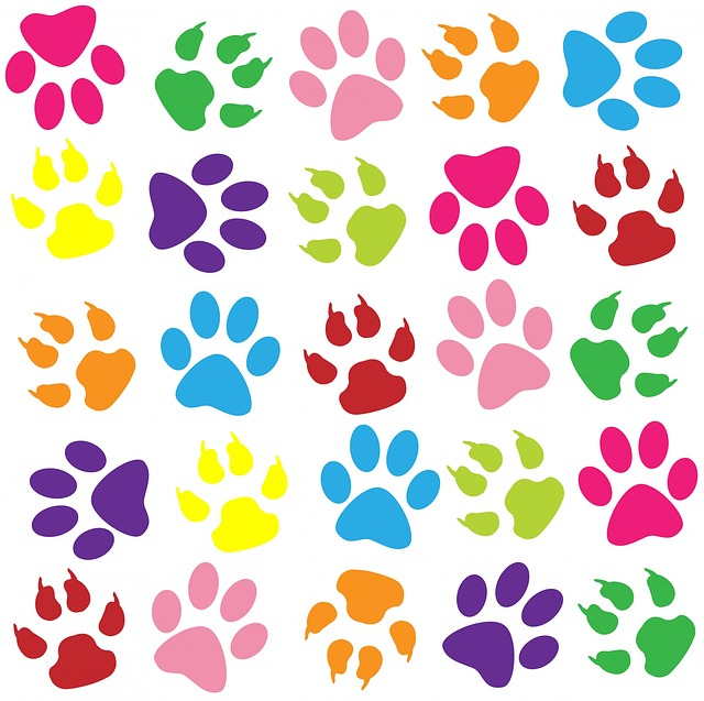 paw print, paw prints, background, wallpaper, pattern