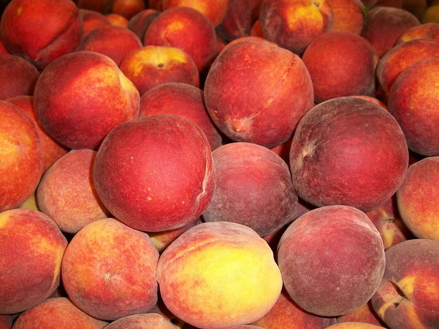 peach, food, peaches, sweet, red, yellow