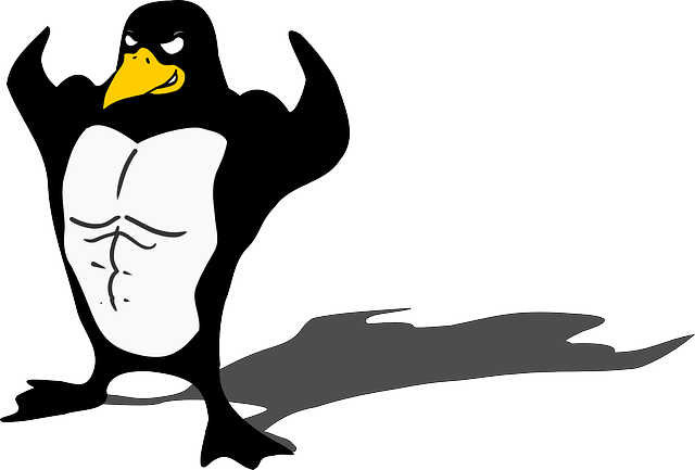 penguin, bodybuilder, linux, muscle, tux, animal, funny