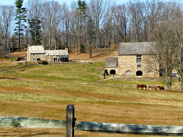 pennsylvania, farm, rural, trees, horse, fence