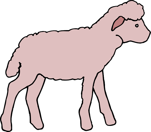 pink, color, art, lamb, animal, fluffy