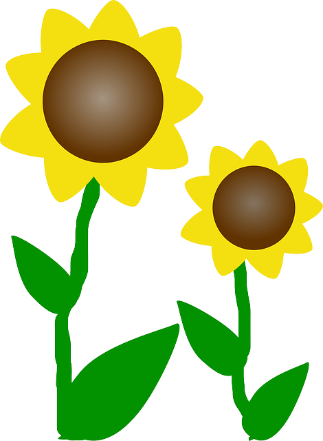 plants, sun, flowers, cartoon, free, cartoons