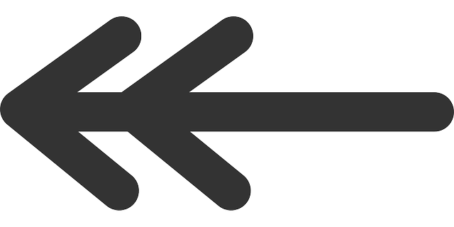 point, flat, left, double, theme, action, icon
