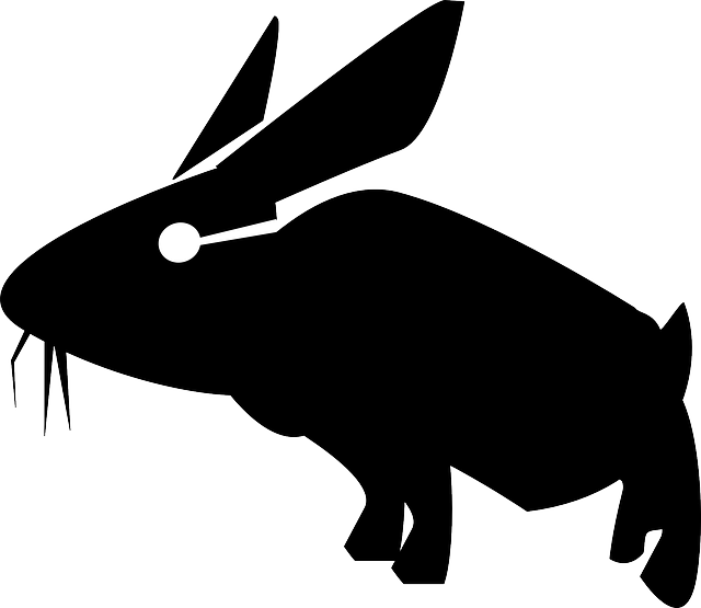 rabbit, hare, bunny, animal, mammal, silhouette
