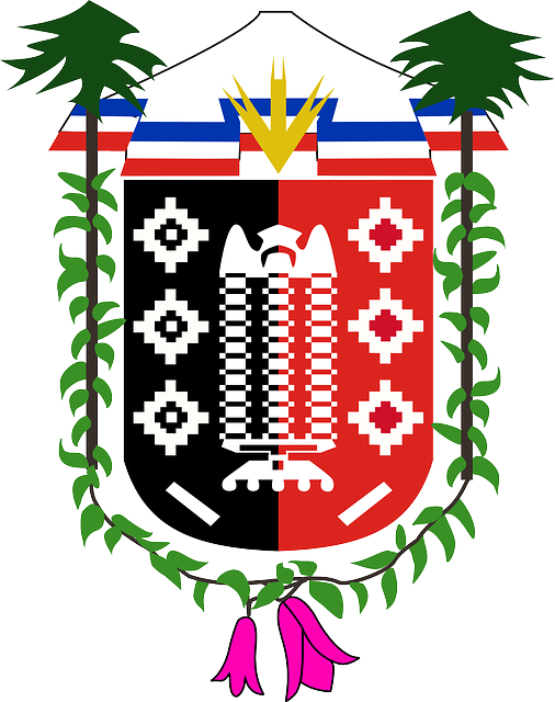 red, black, flowers, coat, arms, chile, decorative