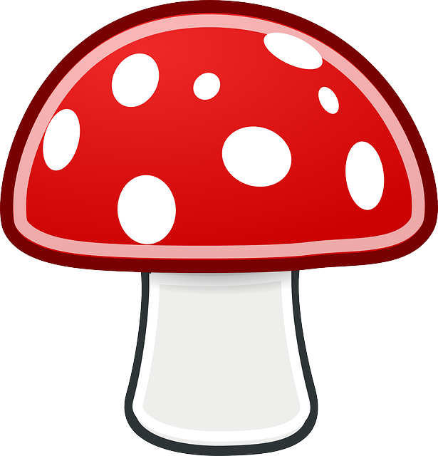 red, black, simple, food, outline, drawing, mushroom