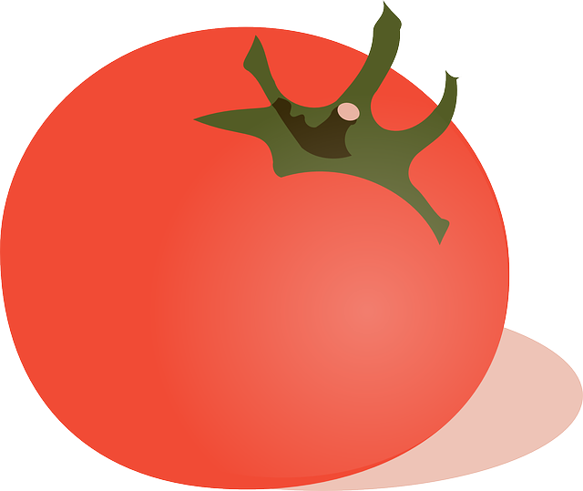 red, food, slice, fruit, cartoon, round, free, salad