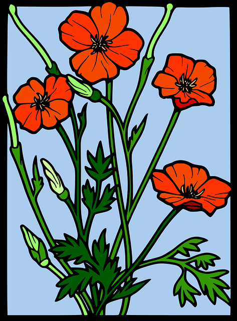 red, glass, simple, drawing, sketch, flower, coloured