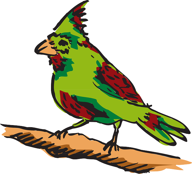 red, green, bird, art, animal, feathers, and, perched