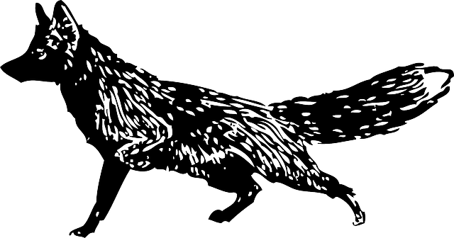 red, silhouette, cartoon, mammals, fox, running, animal