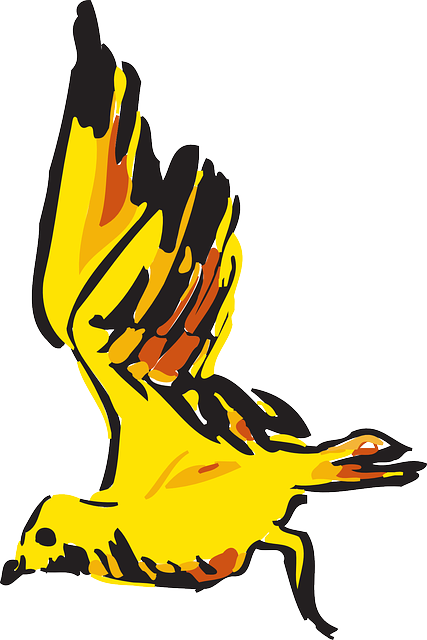 red, yellow, bird, flying, wings, art, animal, feathers