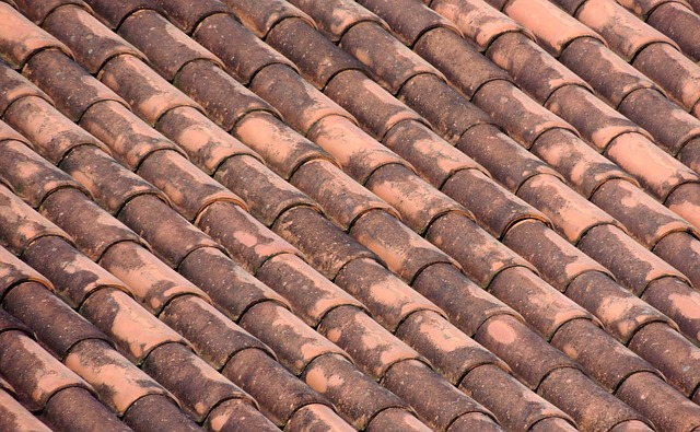 roof, tiles, home, on the roof